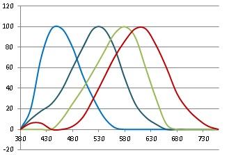 Human color vision spectrum of eye sensitivity ccuart Choice Image